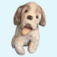 Cute Mid Century Mohair Spaniel Pup