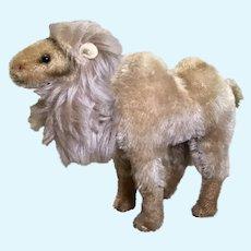 Medium Size Steiff Mohair Camel