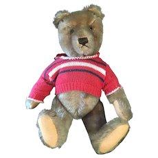 Steiff vintage teddy bear straw stuffed