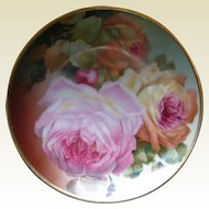 Beautiful 1900s Bavarian Sevres Rose Plate, hand painted.