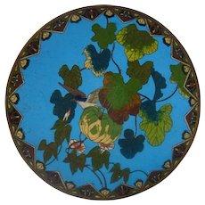 Japanese Meiji Bronze Cloisonne Plate