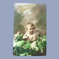 Vintage Real Photo French Easter Postcard of Baby in a Cabbage Patch