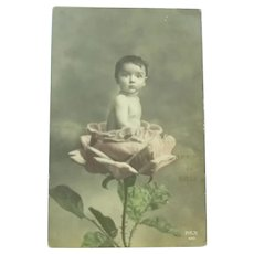 Vintage Real Photo French Postcard of child Sitting in a rose flower