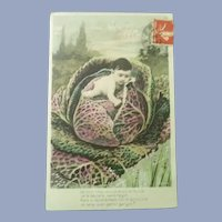 Vintage Real Photo French Postcard of Baby on a Cabbage
