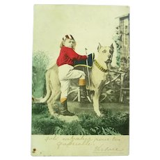1916 Real Photo French Postcard of a boy riding a dog.