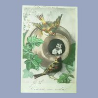 Wonderful Surreal Vintage Real Photo French Postcard of Child and Birds
