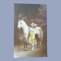 Wonderful Real Photo Vintage French Postcard of Maiden and her Horse