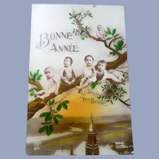Vintage French Multiple Baby Postcard of Children in a Tree
