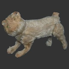 All jointed cat steiff before 1910