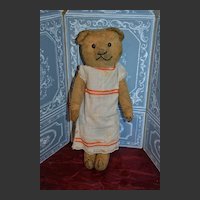 A french nice teddy bear 1920