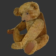 A Superb  teddy bear, dating to the 1915/1920