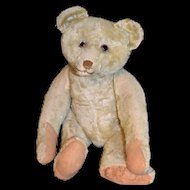 """Antique 20"""" honey mohair bear"""