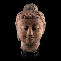 Lifesize terracotta head of Buddha, Java, 10th.-13th. century AD