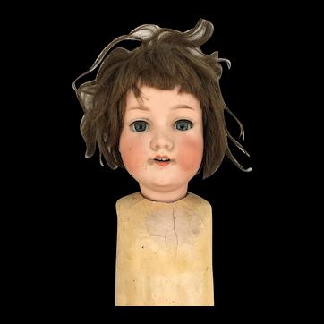 28 inch A.M. 390 bisque head original wig glass eyes parts doll