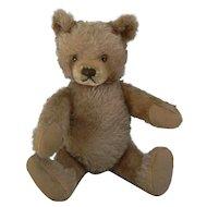Vintage Steiff Teddy Bear just needs his head put back on great bear.