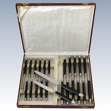 French Silver & Horn Dinner Dessert Knife Set 24 Pc, Stainless Steel Blades, Box