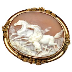 Victorian large 14k gold frame stallion mare and colt horse scene carved shell cameo brooch pin