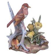 Veery Bird Figurine Sculpture Andrea by Sadek