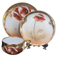 Pickard Poppy and Daisy Cup Saucer Plate by Osborne Art Studio
