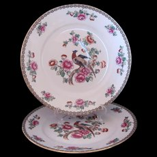 "PHEASANT 2 Dinner Plates 10"" F. Winkle & Co. Whieldon Ware Antique c.1908"