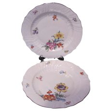 Dresden Carl Thieme Two Plates 7.5 Inches c.1901