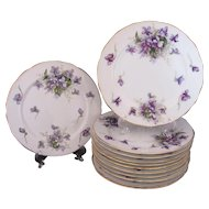 Spring Violets Bread & Butter or Snack Plates Occupied Japan Rossetti Lot of 12