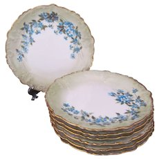 Limoges Plates Set of Seven Hobbyist Painted c.1900