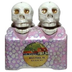 Vintage Skull Nodder Head Salt and Pepper S&P Souvenir Shakers Bill's Place PA 1950s