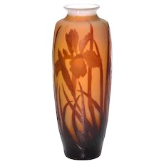 RARE Paul Nicolas D'Argental Cameo Glass Vase designed for St Louis - Stunning IRIS Vase
