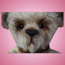 Mohair Award Winning Artist Made One of A Kind Teddy