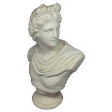 Classical Male Parian Bust