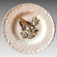 Outstanding Set of Eight Audubon Bird Dinner Plates