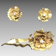 14 Karat Earrings and Brooch Set with Diamonds