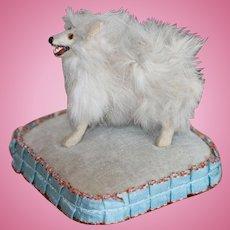 Antique Pomeranian Dog For Fashion, Mignonette Dolls