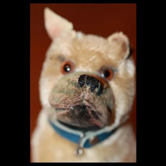Steiff Bulldog Vintage