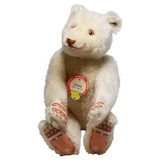 Steiff White Mohair Dicky Bear with Blank Button and Chest Tag
