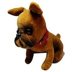 Adorable Vintage Velveteen Bulldog Pup
