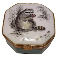 Limoges France Rochard Hand Painted Eximious Raccoon Pill or Trinket Box