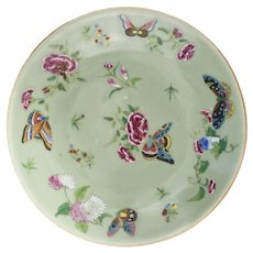 19th C. Chinese Celadon Porcelain Butterfly Floral Plate