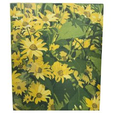 Yellow Daisy Floral Lithograph, Hans Van Liempt 1986