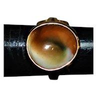 Antique Operculum Shell Gold Ring Good Luck