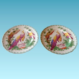 Pair of Royal Crown Derby, Chelsea Birds, Plates