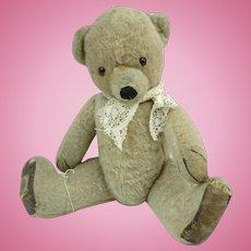 1950 Chad Valley Teddy. Cubby Bear