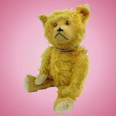 1920 Hevetic pull string musical teddy bear