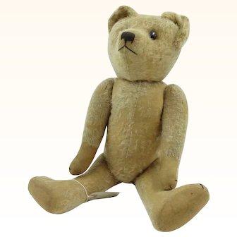 French FADAP Teddy Bear Eric