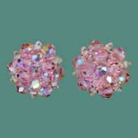 LAGUNA Pink Crystal Bead earrings