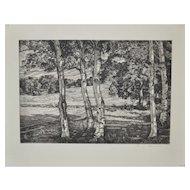 """Luigi Lucioni (1900-1988) """"Between Birches"""" Etching c.1940's"""
