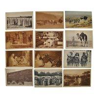 Lot of Twelve Lehnert & Landrock Photo Postcards of North Africa c.1910