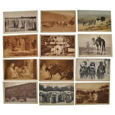 Lot of Twelve Lehnert & Landrock Photo Postcards of North Africa c.1910