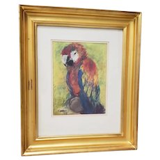 A Scarlet Macaw Original Pastel Painting